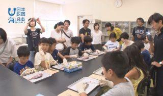 新潟県-A23-s1