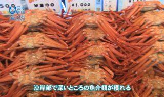 新潟県A05-s02