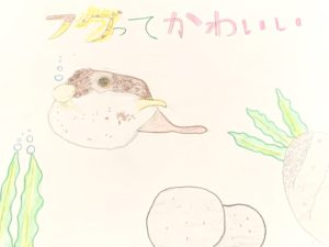 横村芽依(よこむらめい)